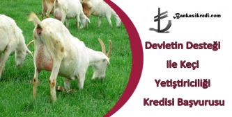 keçi yetiştiriciliği devlet desteği