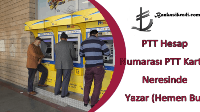 PTT Hesap Numarası PTT Kartın Neresinde Yazar (Hemen Bul)
